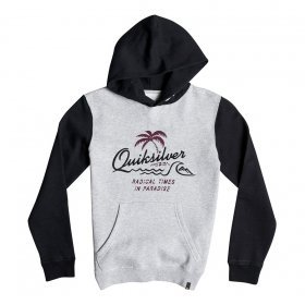 Mikiny Quiksilver No Longer Hoody Youth