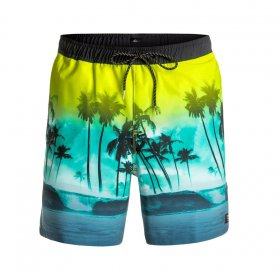 Boardshorty Quiksilver Waves Volley 17
